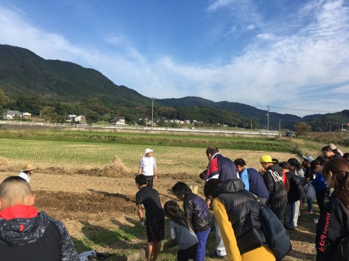 平成29年11月12日(日)親子レク・芋掘り体験